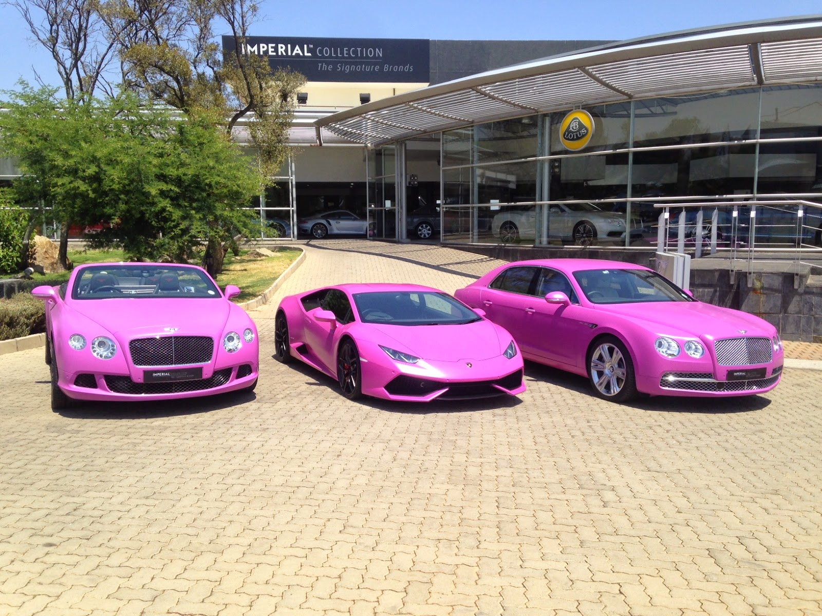 lamborghini-bentley-south-africa-breast-cancer-pink-wrapped-dipped-zero2turbo2 Mesmerizing Lamborghini Huracan Price In south Africa Cars Trend
