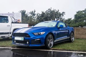 roush ford mustang south africa